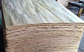 Brazil Pine Veneer